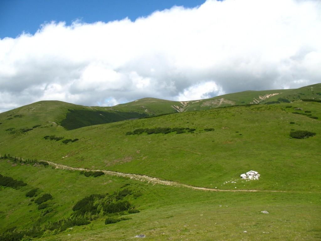 Nádherné zelené louky nás doprovázely po celý přechod pohoří