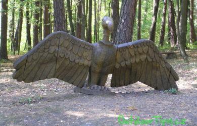 Pivečkův lesopark - kondor