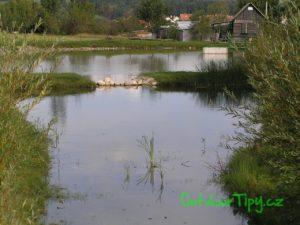 Obecní rybník Hajnice