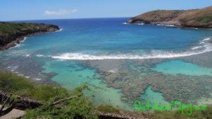 Hanuma Bay korálová zahrádka v sousedství Honolulu (ostrov Oahu)