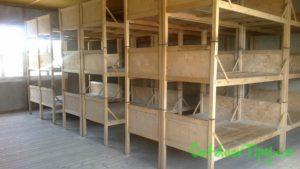 postele v koncetračním táboře