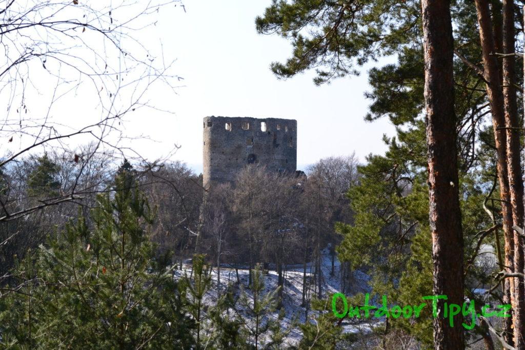 Fotografie s hradem v pozadí