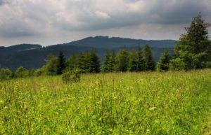 Leopoldov - okolní krajina