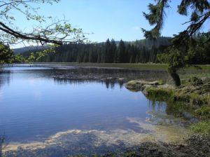 Rybník u Leopoldova