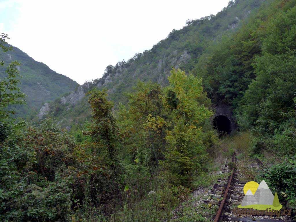 zarostlá železniční trať