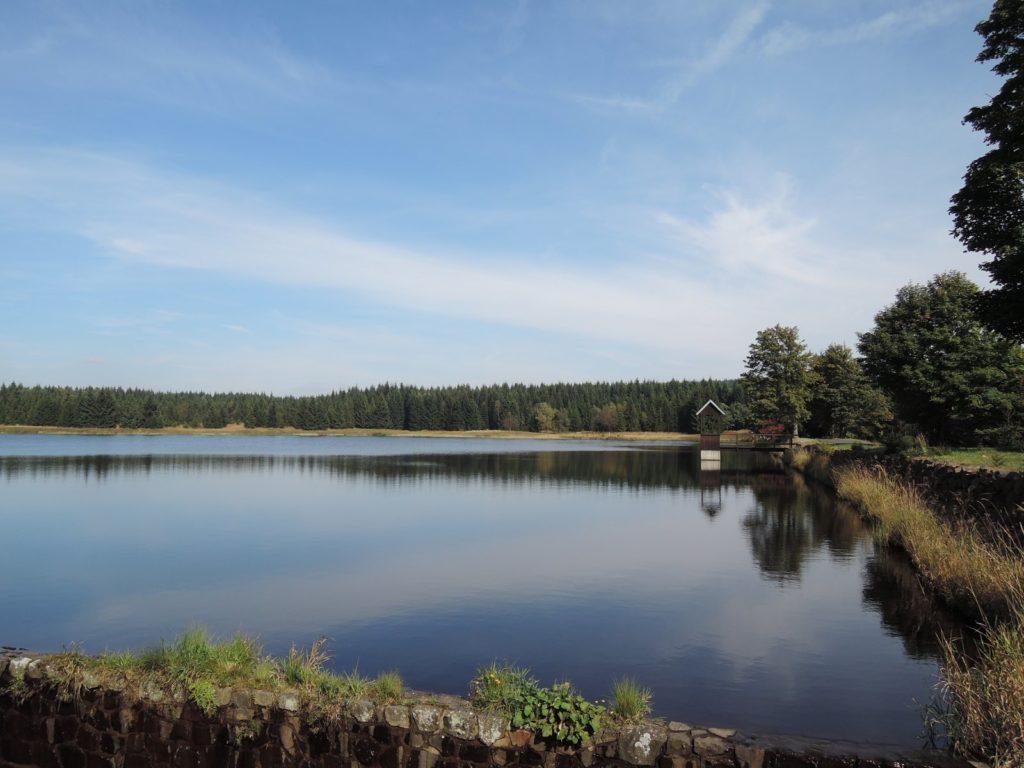 Nový rybník pod Jelením vrchem